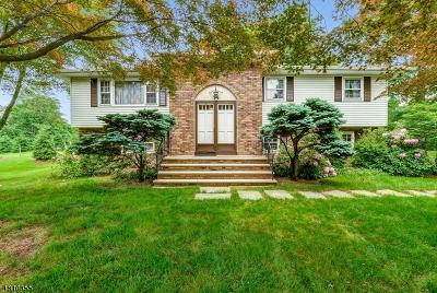 Montville Twp. Single Family Home For Sale: 14 Douglas Dr