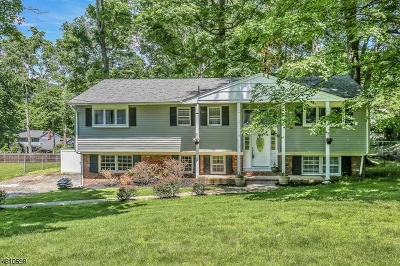 Sparta Twp. Single Family Home For Sale: 11 Partridge Ln