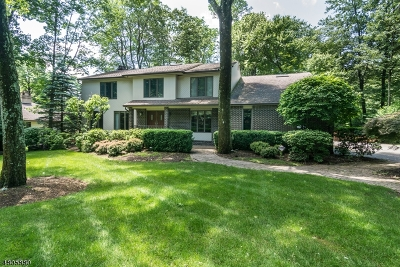 Randolph Twp. Single Family Home For Sale: 20 Tammy Hill Trl
