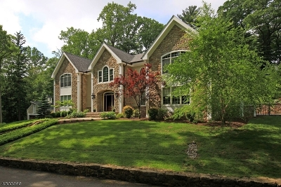 Bernardsville Boro NJ Single Family Home For Sale: $1,995,000