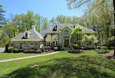 Bernardsville Boro Single Family Home For Sale: 12 Cobblefield Dr
