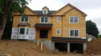 Madison Single Family Home For Sale: 29 Douglas Ave