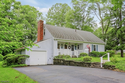 Bernardsville Boro Single Family Home For Sale: 31 Old Colony Rd