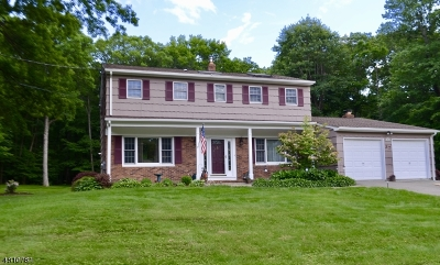 Roxbury Twp. Single Family Home For Sale: 37 Jefferson Dr