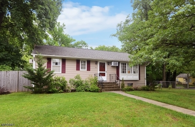 Fanwood Boro Multi Family Home For Sale: 96 South Ave