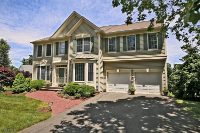 Bernards Twp. Single Family Home For Sale: 19 Queenberry Way