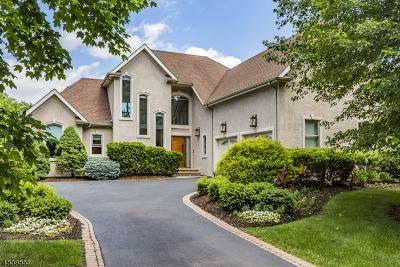 Montgomery Twp. Single Family Home For Sale: 3 La Costa Ct