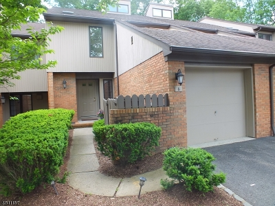Morris Twp. Condo/Townhouse For Sale: 6 Byron Ave