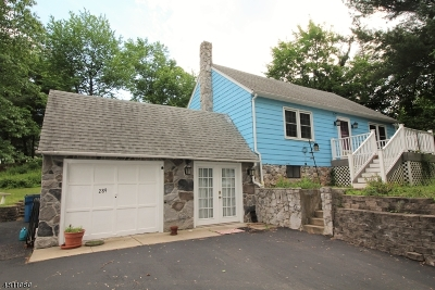 Readington Twp. Single Family Home For Sale: 289 Mountain Rd