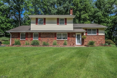 Holland Twp., Milford Boro Single Family Home For Sale: 179 York Rd