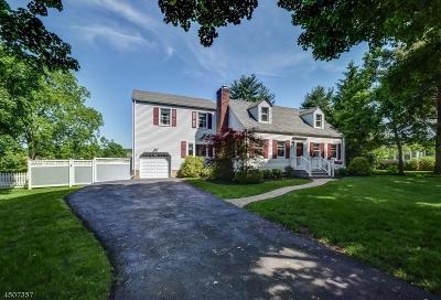 Mendham Boro Single Family Home For Sale: 12 Park Ave