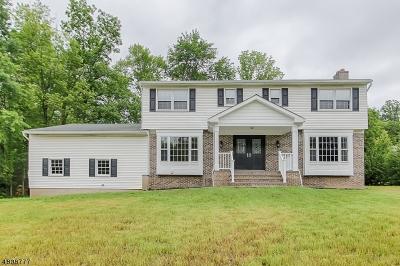 Montville Twp. Single Family Home For Sale: 16 Cheryl Rd