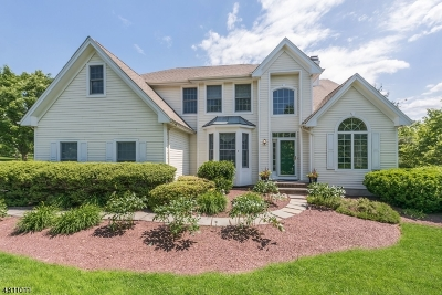 Montgomery Twp. Single Family Home For Sale: 1 Colonial Ct
