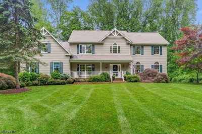 Mendham Twp. NJ Single Family Home For Sale: $799,000