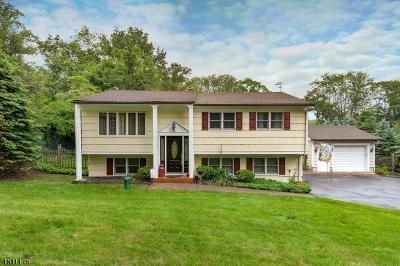 Mount Olive Twp. Single Family Home For Sale: 159 Mt Olive Rd