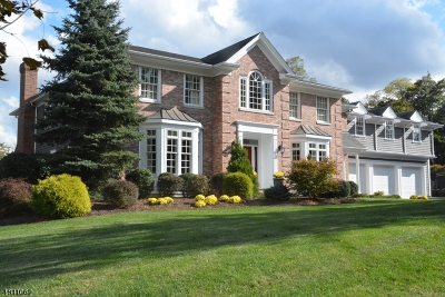 Chatham Twp. Single Family Home For Sale: 1 Sycamore Drive