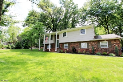 Branchburg Twp. Single Family Home For Sale: 41 Oriole Ln
