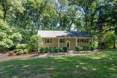 Morris Twp. Single Family Home For Sale: 36 N Star Dr