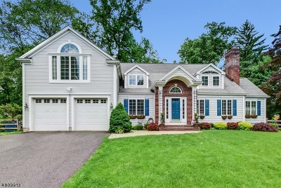 Bernards Twp. Single Family Home For Sale: 66 Winding Lane