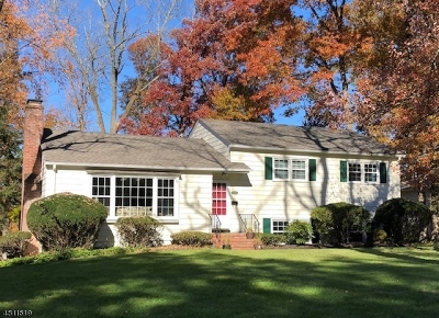 Berkeley Heights Single Family Home For Sale: 102 Oakland St