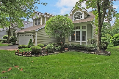 Bedminster Twp. Single Family Home For Sale: 17 Smoke Rise Ln