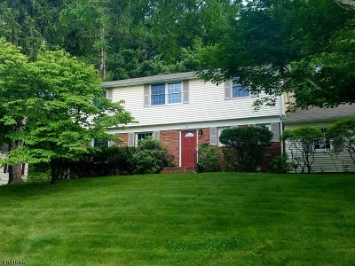 New Providence Single Family Home For Sale: 74 Possum Way