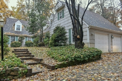 Berkeley Heights Single Family Home For Sale: 361 Emerson Ln
