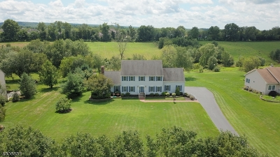 Hillsborough Twp. Single Family Home For Sale: 33 Norz Dr