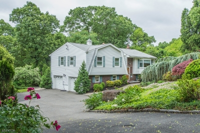 Parsippany-Troy Hills Twp. Single Family Home For Sale: 3 Oakland Ct