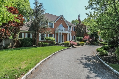 Edison Twp. Single Family Home For Sale: 1115 New Dover Rd