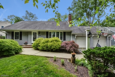 Westfield Town NJ Single Family Home For Sale: $799,999