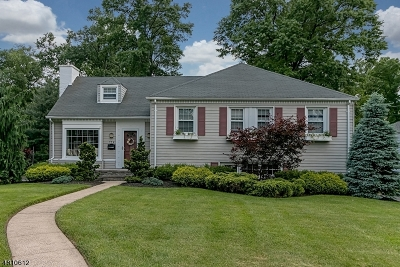 Westfield Town NJ Single Family Home For Sale: $824,900