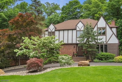 Berkeley Heights Single Family Home For Sale: 12 Branko Rd