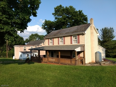 Alexandria Twp., Frenchtown Boro Single Family Home For Sale: 1491/1493 Cty Rd 519