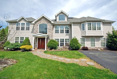 Piscataway Twp. Single Family Home For Sale: 11 Mill Brook Rd