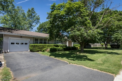 Piscataway Twp. Single Family Home For Sale: 1550 New Brunswick Ave