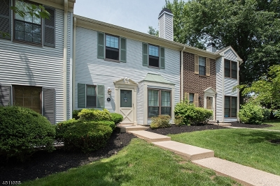 Bernards Twp. Condo/Townhouse For Sale: 74 Woodward Ln #74