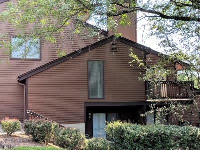Hunterdon County Condo/Townhouse For Sale: 8 Meadowview Dr