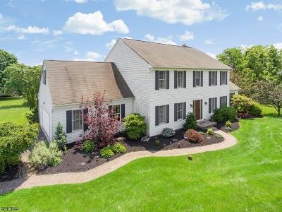 Raritan Twp. Single Family Home For Sale: 9 Cyndi Ct