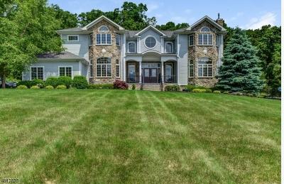 Tewksbury Twp. Single Family Home For Sale: 30 Big Spring Rd