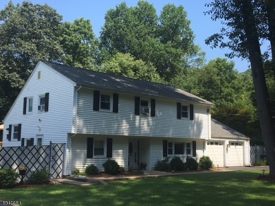 Mount Olive Twp. Single Family Home For Sale: 183 Mine Hill Rd