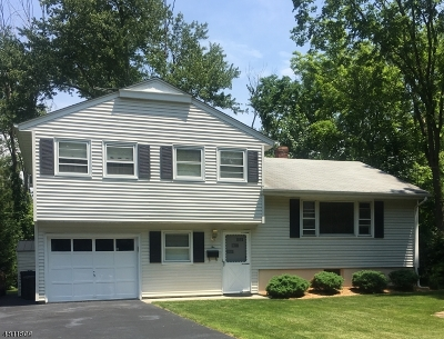 Florham Park Boro Single Family Home For Sale: 2 Elm St