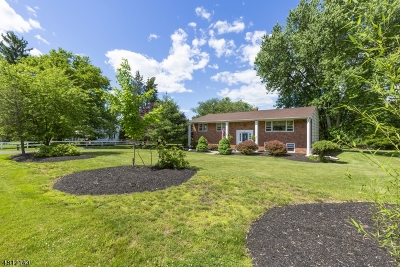 Branchburg Twp. Single Family Home For Sale: 4 Dreahook Rd