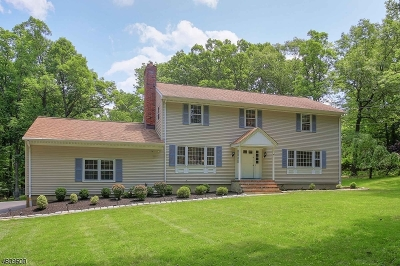 Warren Twp. Single Family Home For Sale: 38 Blazier Rd