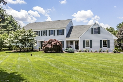 Montgomery Twp. Single Family Home For Sale: 85 Ridgeview Dr