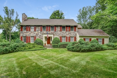 Morris Twp. Single Family Home For Sale: 48 Eagle Nest Rd