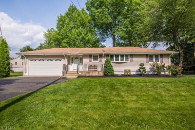 Parsippany-Troy Hills Twp. Single Family Home For Sale: 182 Everett Rd