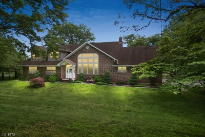 Basking Ridge Single Family Home For Sale: 455 Somerville Rd