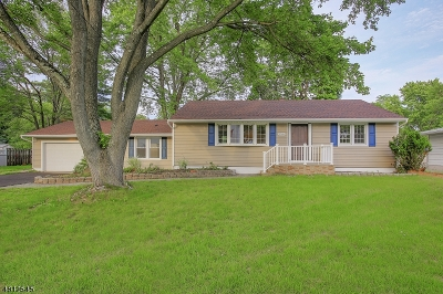 Piscataway Twp. Single Family Home For Sale: 1519 Greenwood Dr