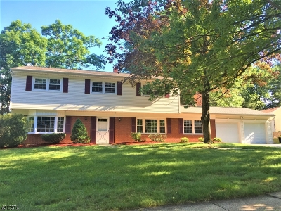 Parsippany-Troy Hills Twp. Single Family Home For Sale: 21 Celtic Way